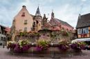 Alsace-1